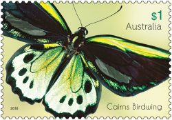 $1 Beautiful Butterflies - Cairns Birdwing stamp 2016. * Only to be reproduced with the perforations included.