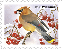 Songbirds in snow forever stamps
