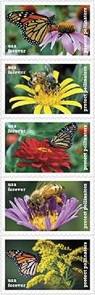Protect Pollinators