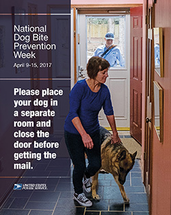 Dog bite poster