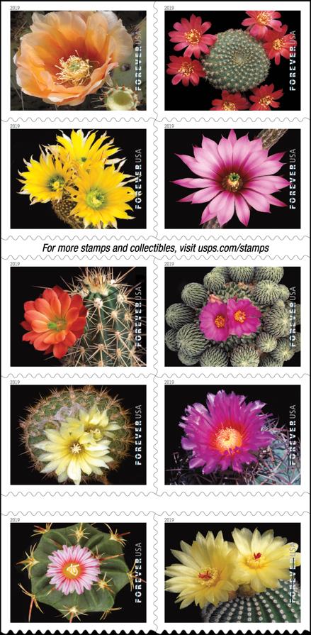 Cactus Flowers stamp