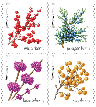 Winter Berries stamp