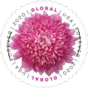 Chrysanthemum Global stamp
