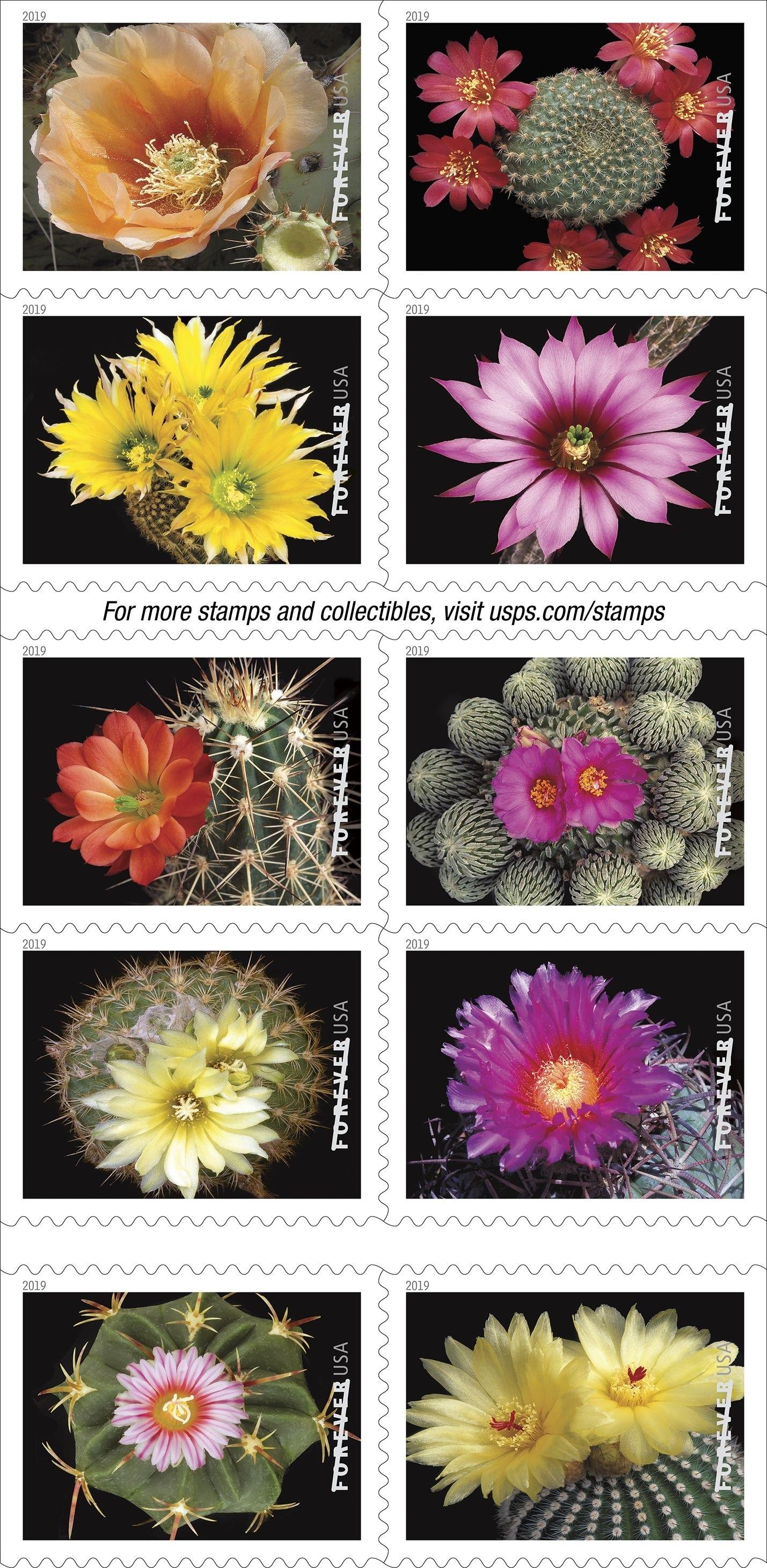 USPS releases Cactus Flowers Forever stamps   postalnews.com